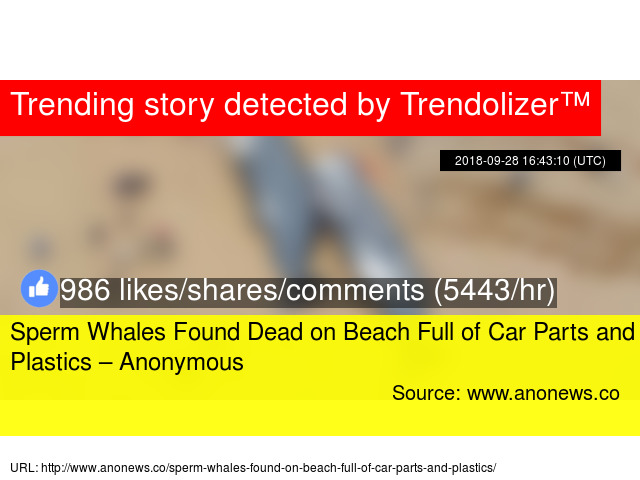 Sperm Whales Found Dead On Beach Full Of Car Parts And Plastics